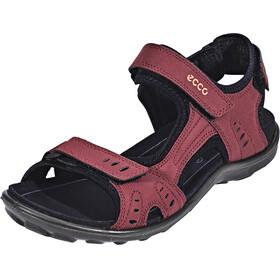 ECCO All Terrain Naiset sandaalit , punainen